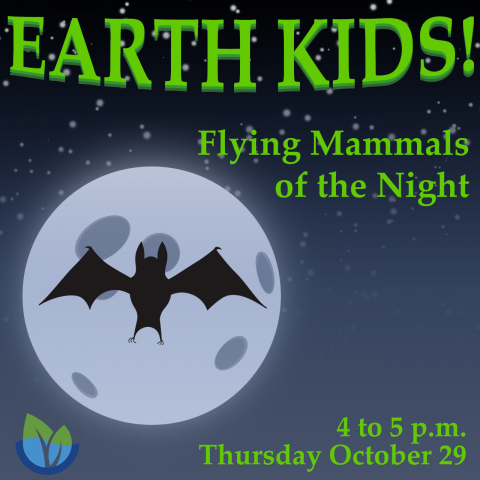 Earth Kids: Flying Mammals of the Night